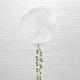 ballons geant avec confettis