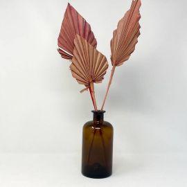Fleurs séchées palmier rose palm spear