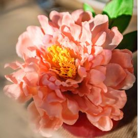 Bouquet de fleurs pêche