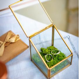 Porte alliances boite en verre terrarium